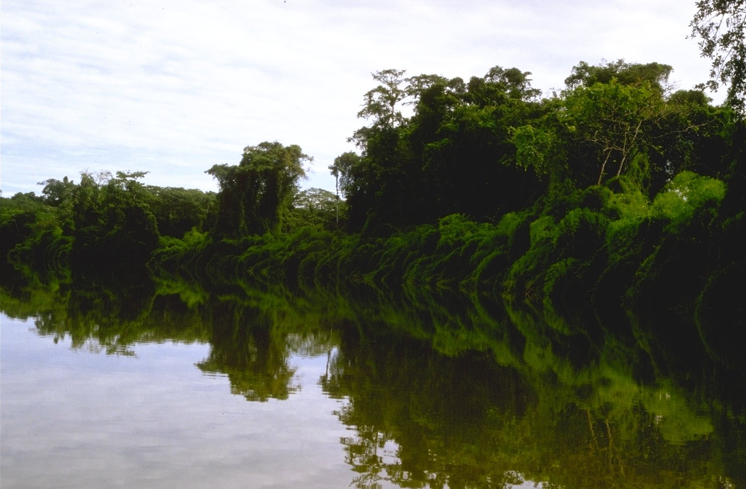 Site de rencontres polynesie francaise